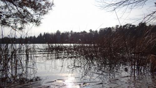 В России начнут проверять все водоканалы с Ростовской области
