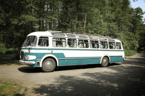 Воронежцы показали, какими видят автобусы после повышения цен
