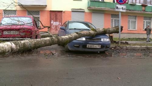 Ураган в Великом Новгороде: Деревья ломаются, как щепки
