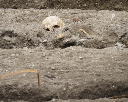 Археологи: На юге Египта найден бюст императора Марка Аврелия