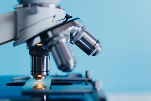 Учёные из Томска создали инкубатор для восстановления органов
