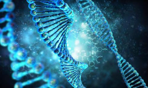 Израильские ученые создают уникальный атлас генома человека
