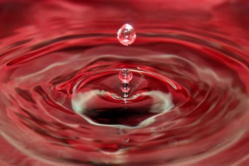 В Рязани вода в озере резко стала красной