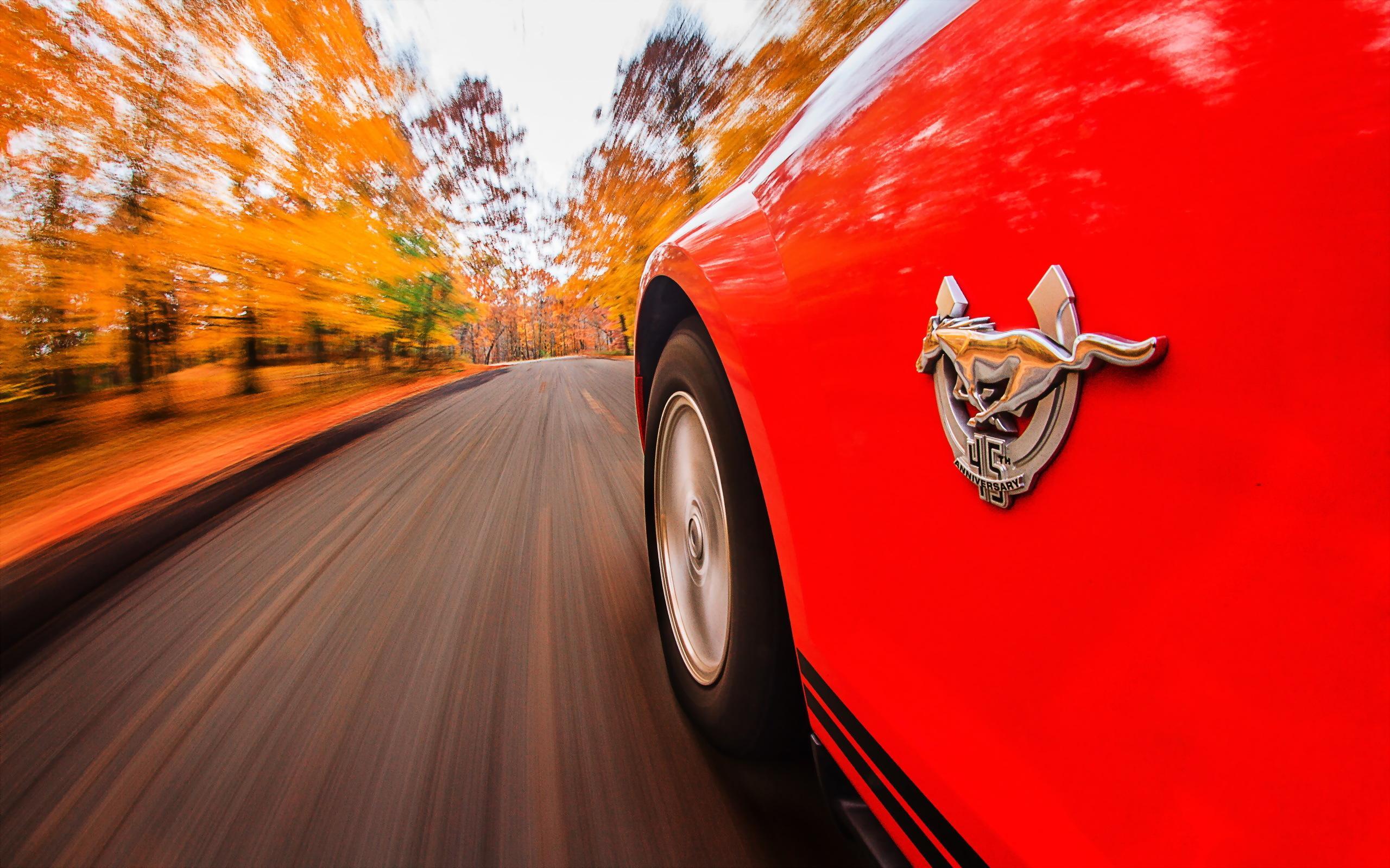 Форд провел опрос в Российской Федерации «Сверхспособности нужные машинам»