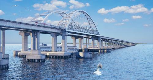 Дельфины атаковали сваи Крымского моста