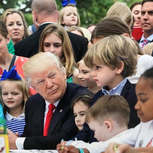 Трамп расслышал covfefe в звуковой иллюзии о Лорел и Йенни
