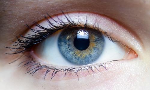 В МГУ появился новый метод диагностики синдрома сухого глаза