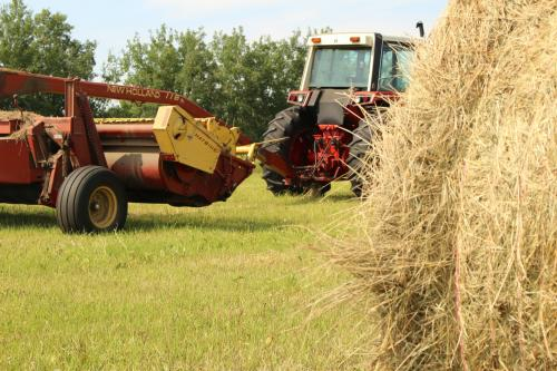 В Татарстане поездка на стоге сена за трактором закончилась смертью