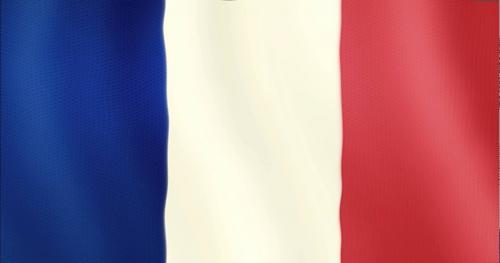 Французские бизнесмены продолжают работу с РФ и Ираном