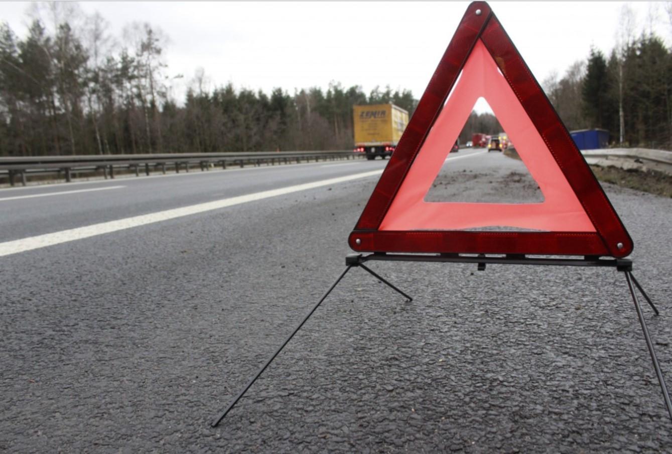 ВРостовской области отыскали тело велосипедиста, погибшего полгода назад