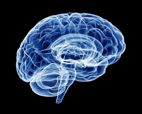 Учёные назвали 6 удивительных способов «перепрошить» мозг