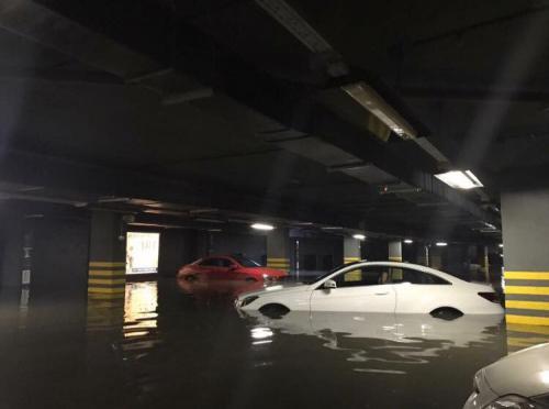 Причиной затопления паркинга фекалиями в Белгороде стала редиска