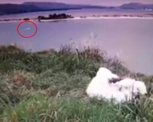 Скоростное НЛО с гуманоидами засняли на камеру в Новой Зеландии