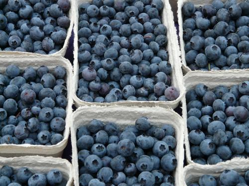 Черника с цезием: В Киеве продают радиоактивные ягоды
