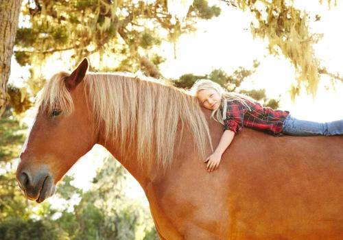 Учёные: лошади могут различать ложь
