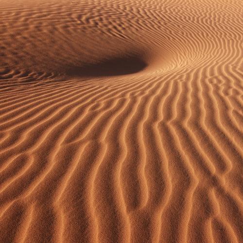 В Воронеже обнаружили «поющие пески»