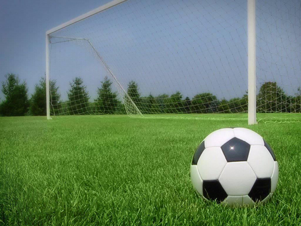Вратарь ветеранской команды скончался вовремя матча вБарнауле