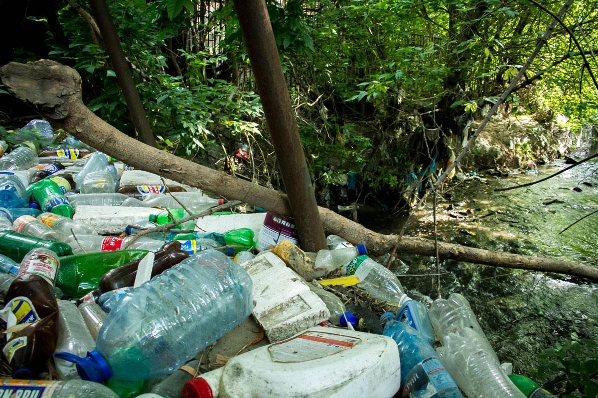 ВЕссентуках русло ручья Капельный превратили всвалку бытовых отходов