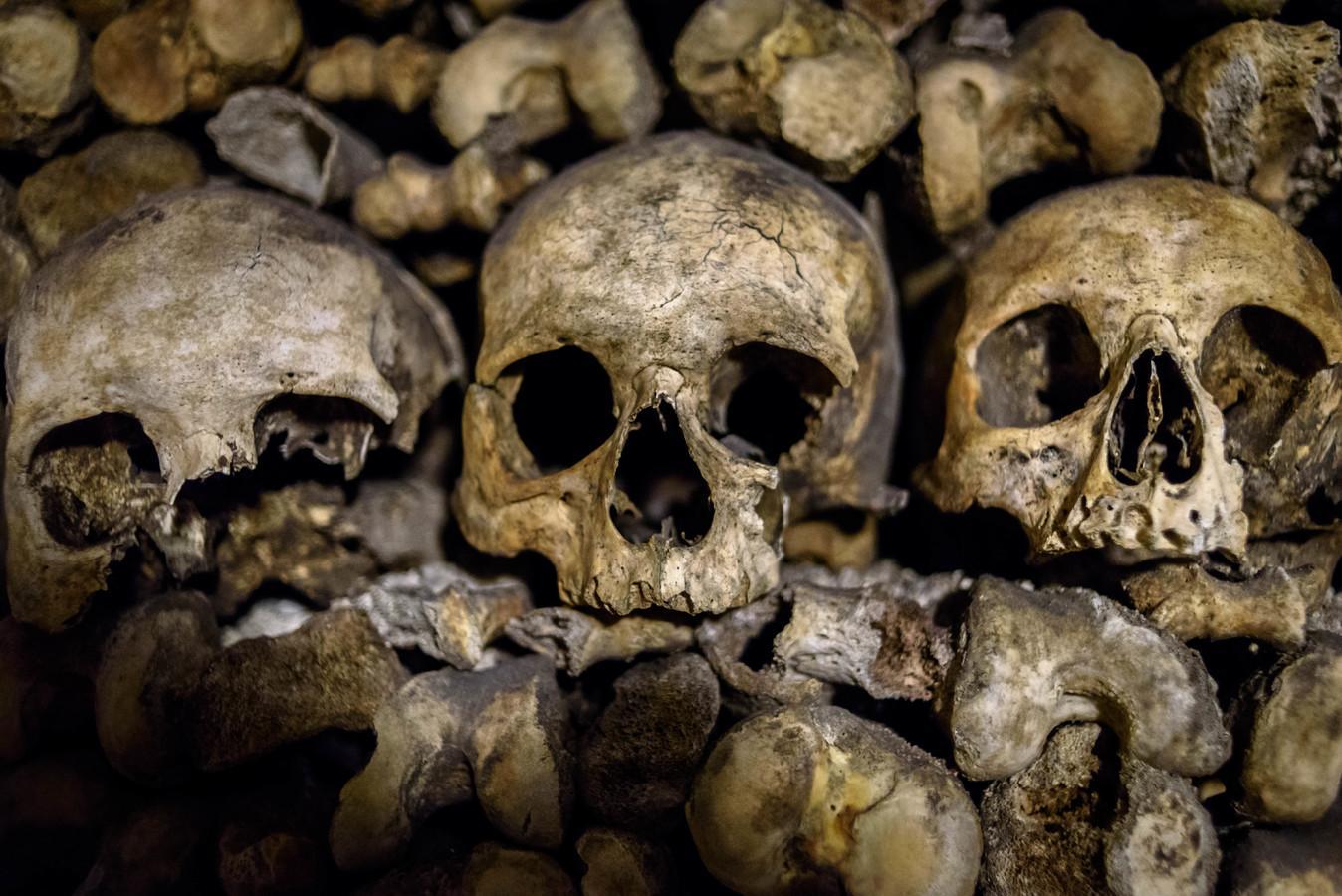 ВИспании найден череп инопланетянина— изумительная находка
