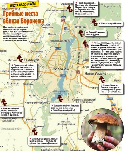 карта изюмского леса по квадратам