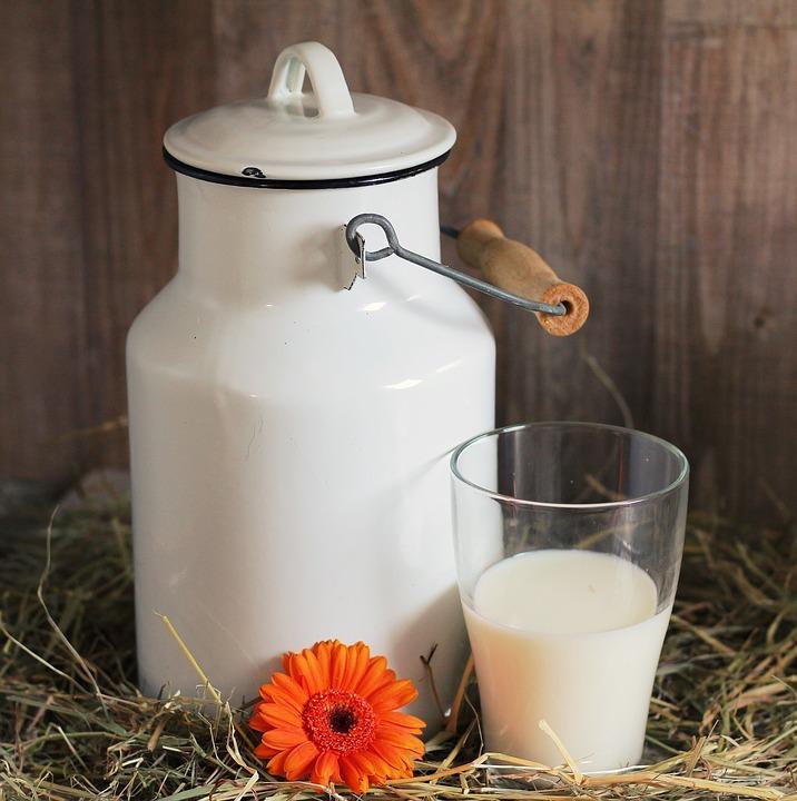 Стало известно, чем полезно употребление молока на ленч