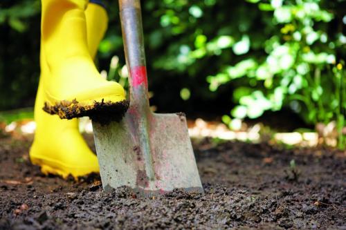 Житель Горно-Алтайска убил и закопал двух мужчин у себя на пасеке