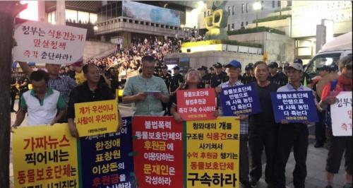 Группы защиты прав животных протестуют против потребления мяса собак в Сеуле
