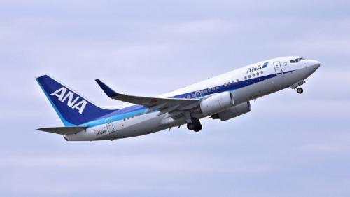 Парень подшофе «пометил» пассажира во время перелета в Японию