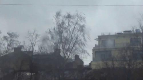 «Буйство урагана»: В Петербурге стихия повалила дорожные знаки и деревья