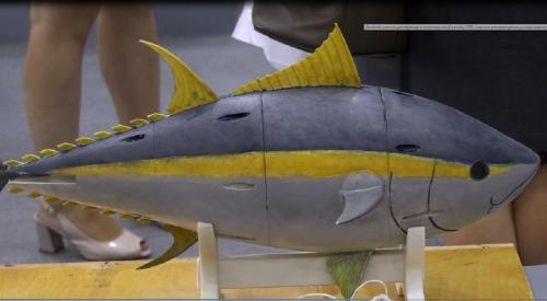 Нижегородские ученые создали для армии биоморфное судно «Тунец»
