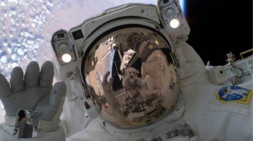 Утечка воздуха на «Союзе» привела к резкой смене цвета волос космонавта