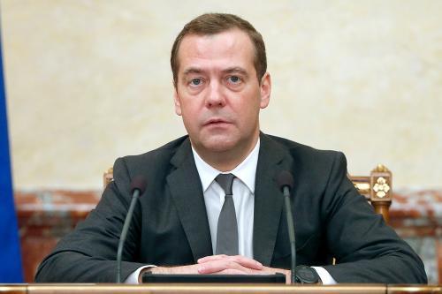 Медведев сообщил о новой стратегии развития лесного комплекса России