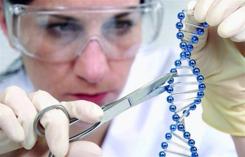 """""""Genes de riesgo"""": los científicos relacionan el desarrollo del autismo con la deficiencia de zinc"""
