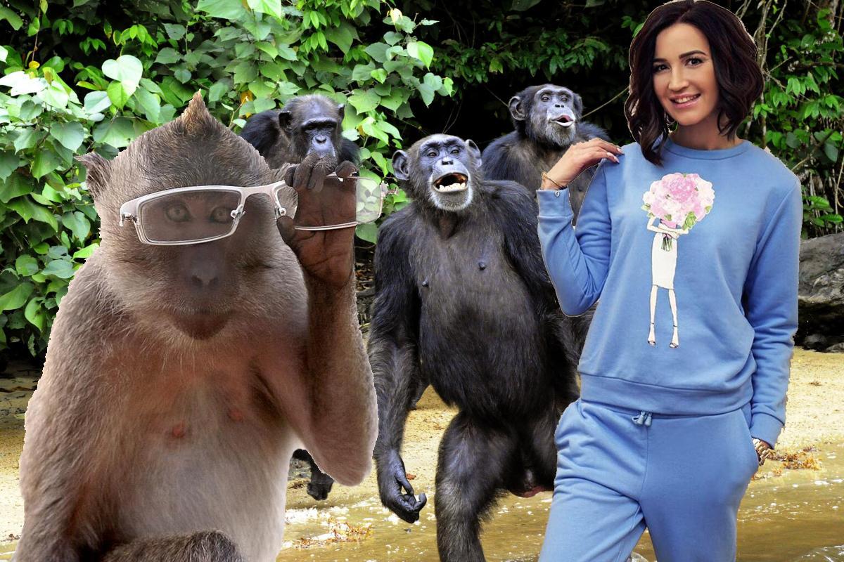 Бузову обокрала обезьяна наБали